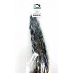 hareline cola ardilla gray squirrel tail natural