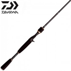 Daiwa TD Zillion Dragon Forester 661MFB